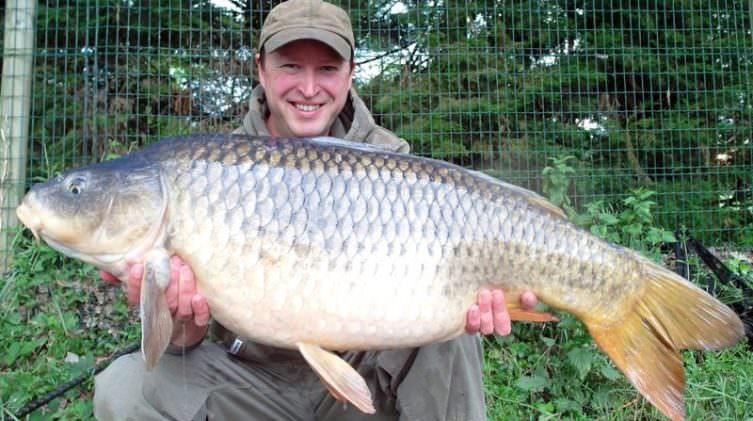 30lb common river carp