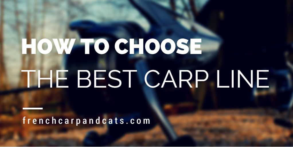 How to choose the best carp line