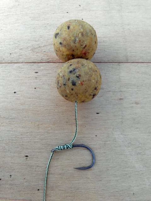 carp rig in position with the baits