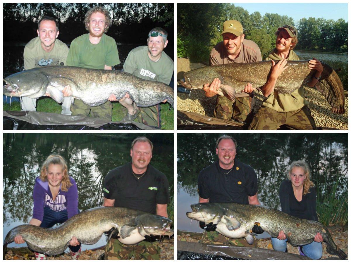 catfish-fishing-france