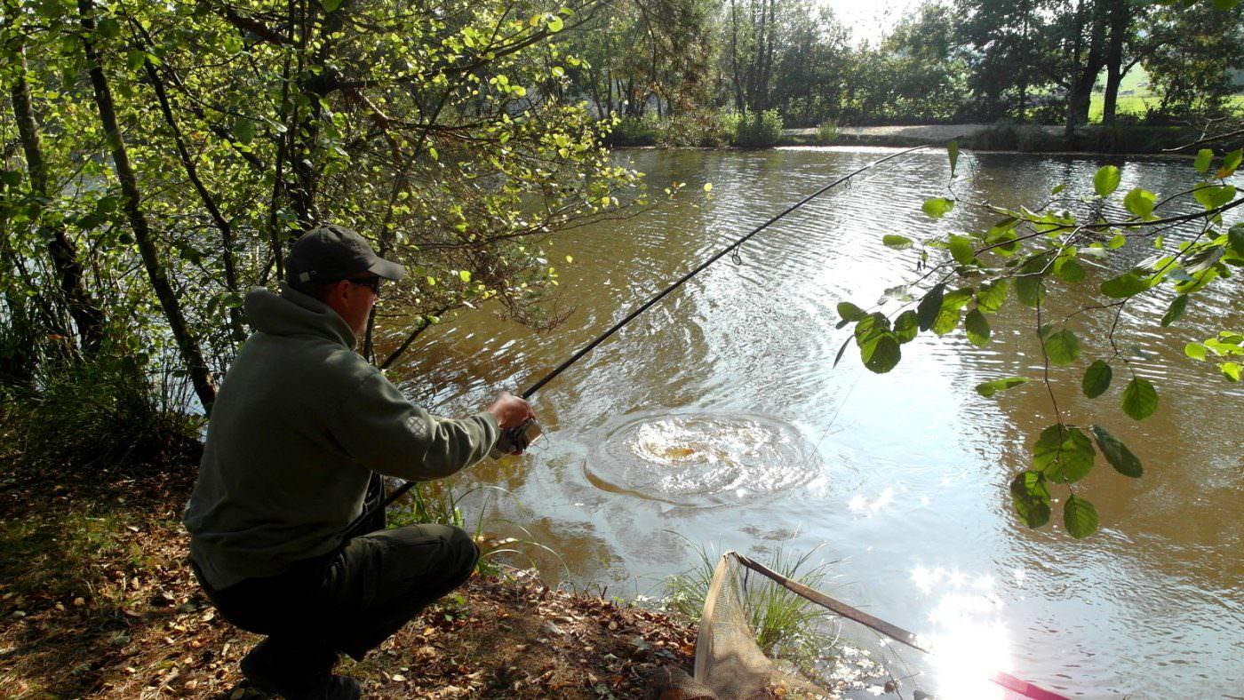 stalking-on-the-island-carp-fishing-france