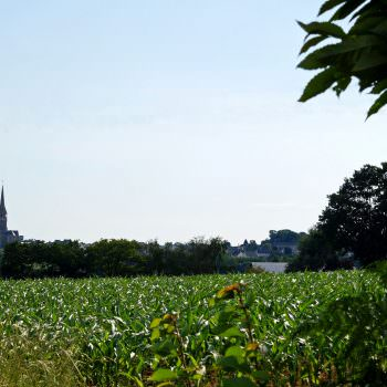 view-of-mayenne-countryside
