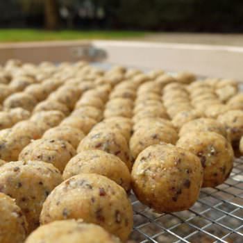 20mm boilies for carp fishing in france