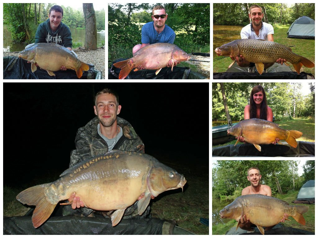 Carp catches in July by 4 anglers