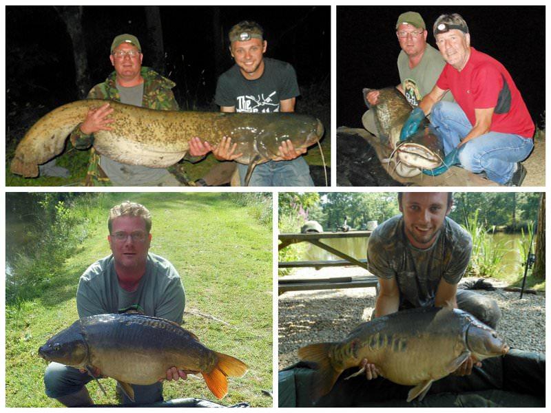 Large Carp and Catfish France