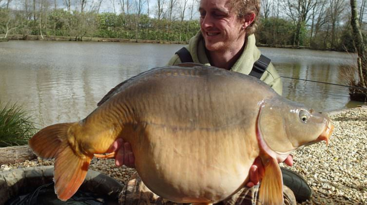 Mark-with-the-Football-a-mirror-carp-of-33lbs