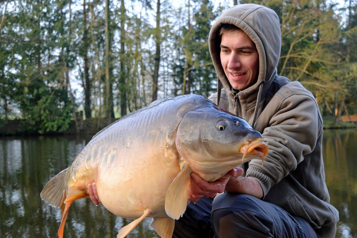 angler with a 33 pounds mirror carp in france