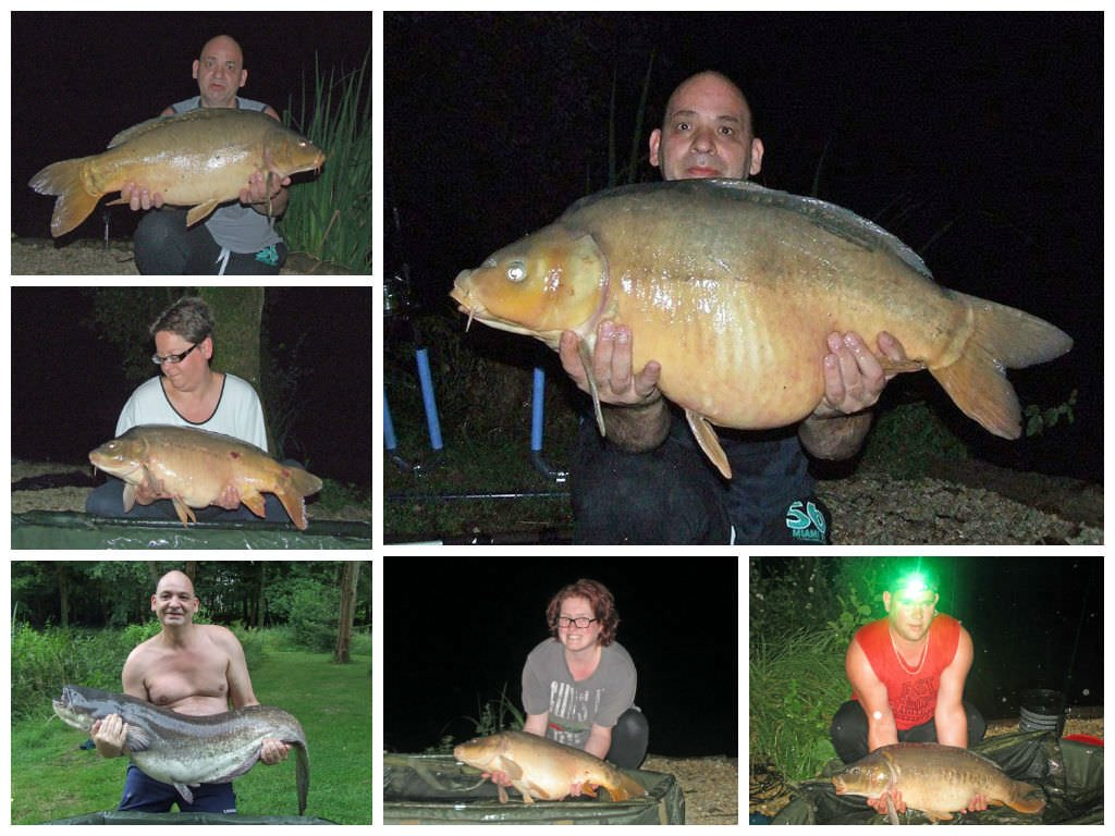 carp and catfish catches in july