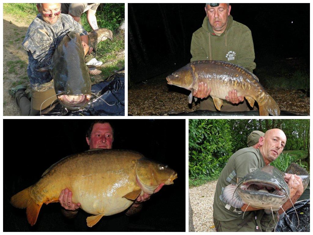 carp catches June 2014