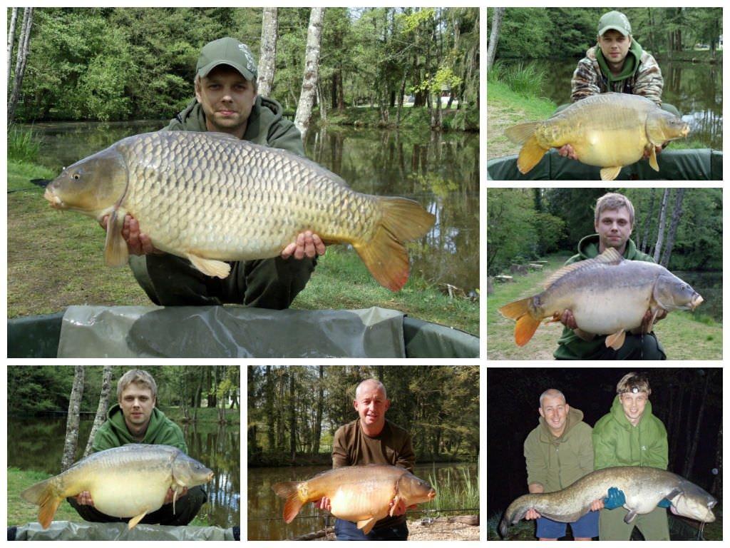 carp-catches-lake-france