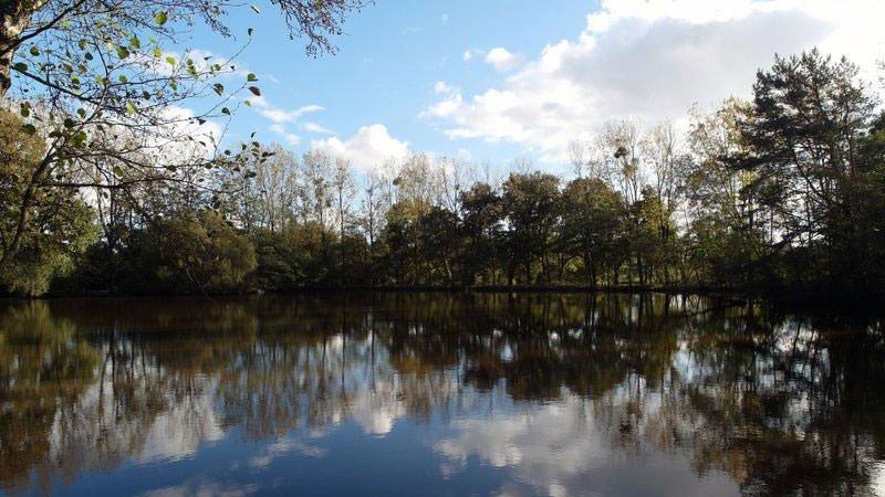 carp-fishing-france-lake-autumn