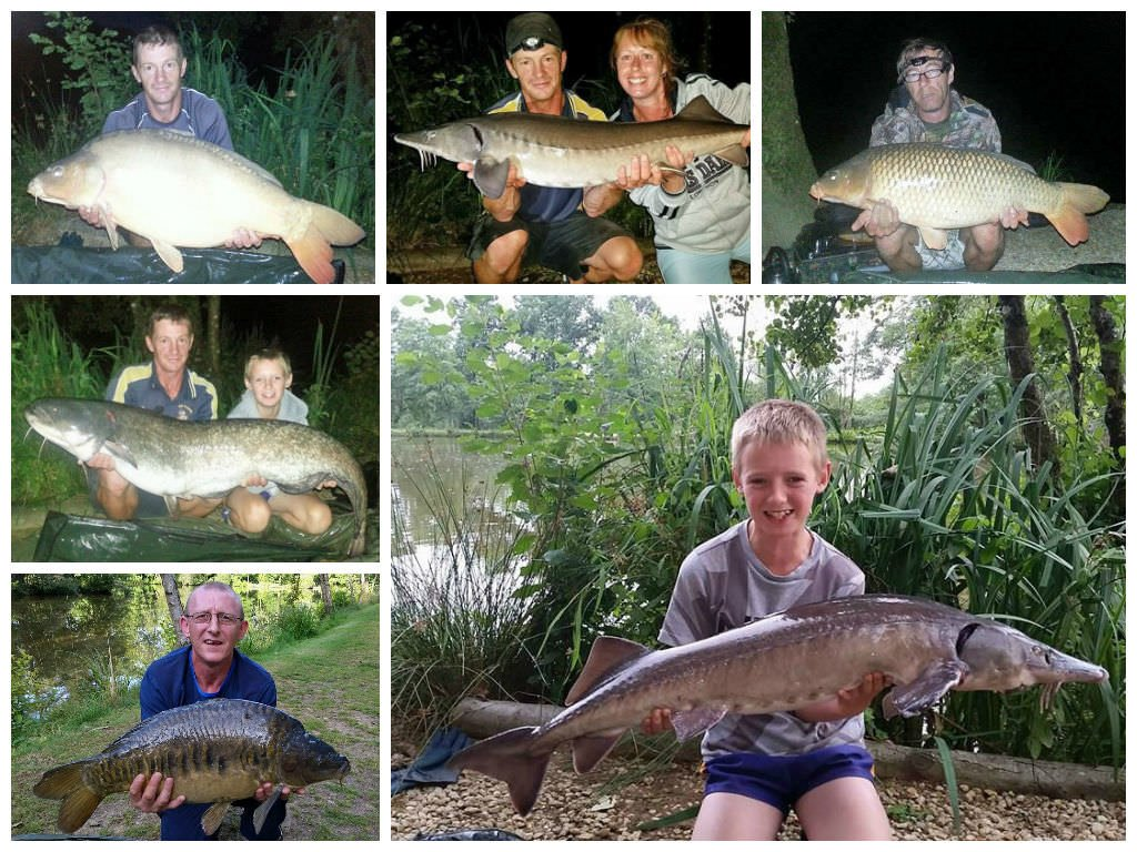 carp fishing holidays in france august 2014