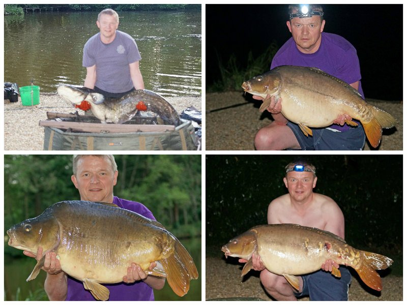 carp from small french lake