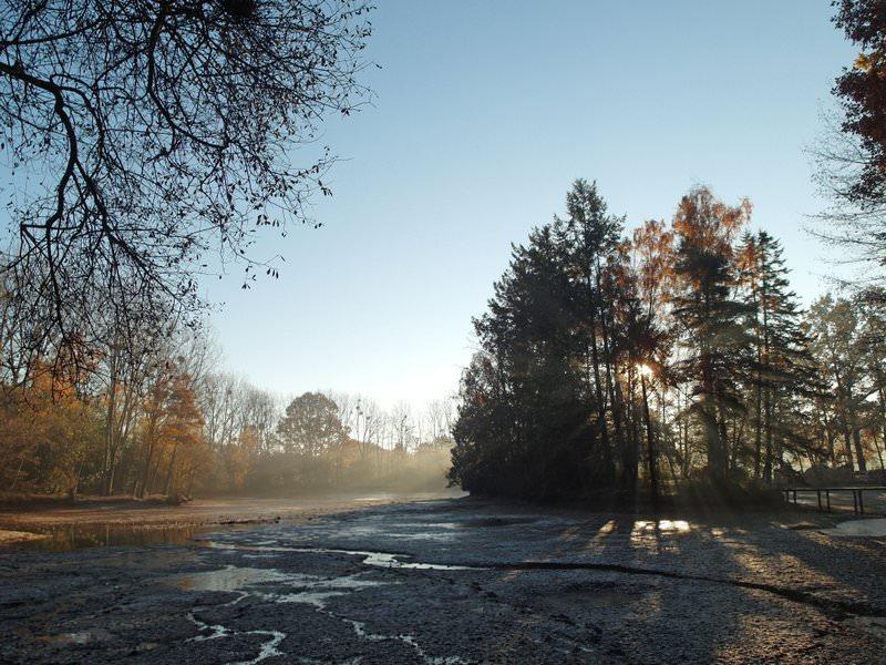 carp-lake-winter