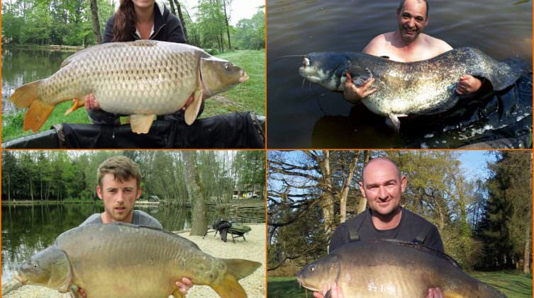anglers exclusive carp fishing in france in early spring