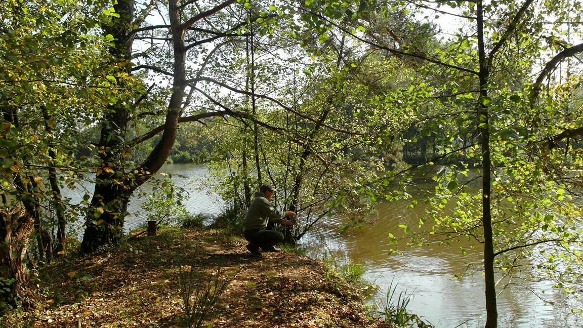 carp stalking-fishing-on-the-island-france