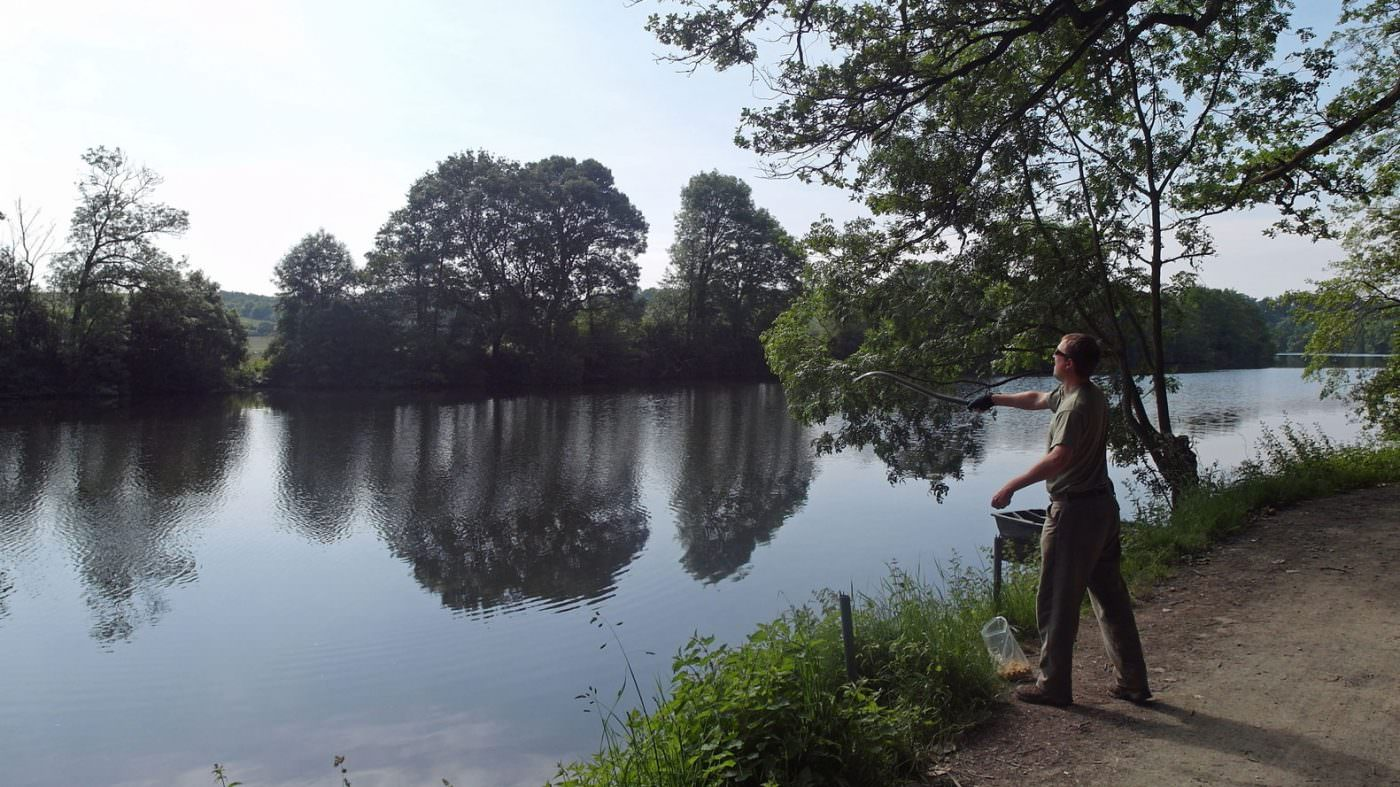 pre-baiting-on-the-river-is-essential-for-catching-carp
