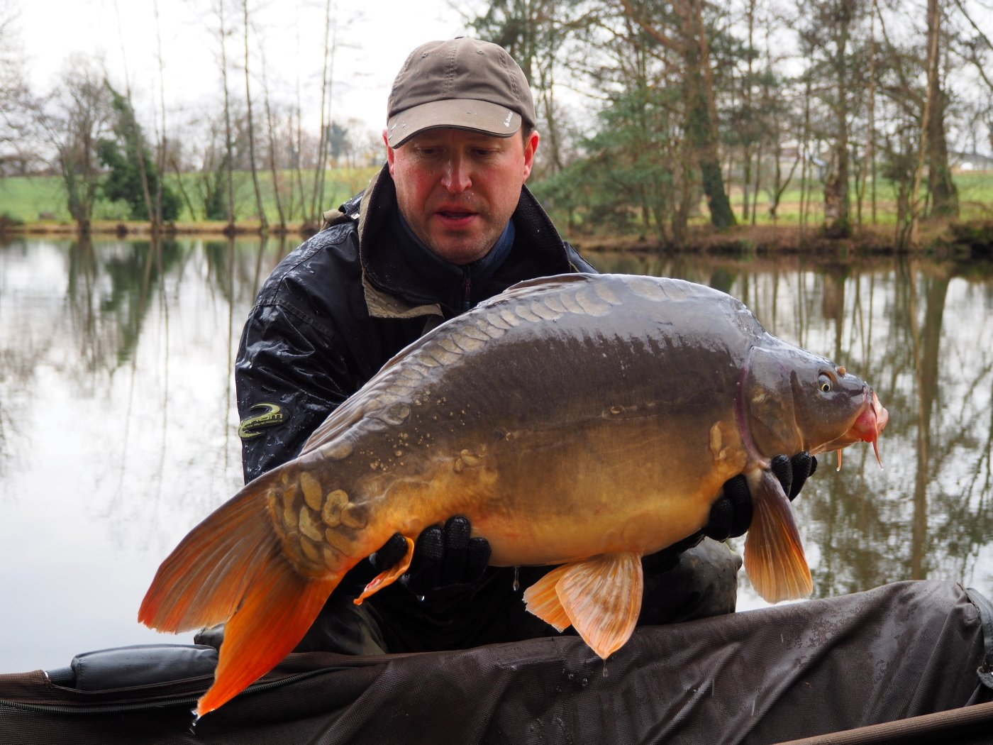 New mirror carp at Beausoleil
