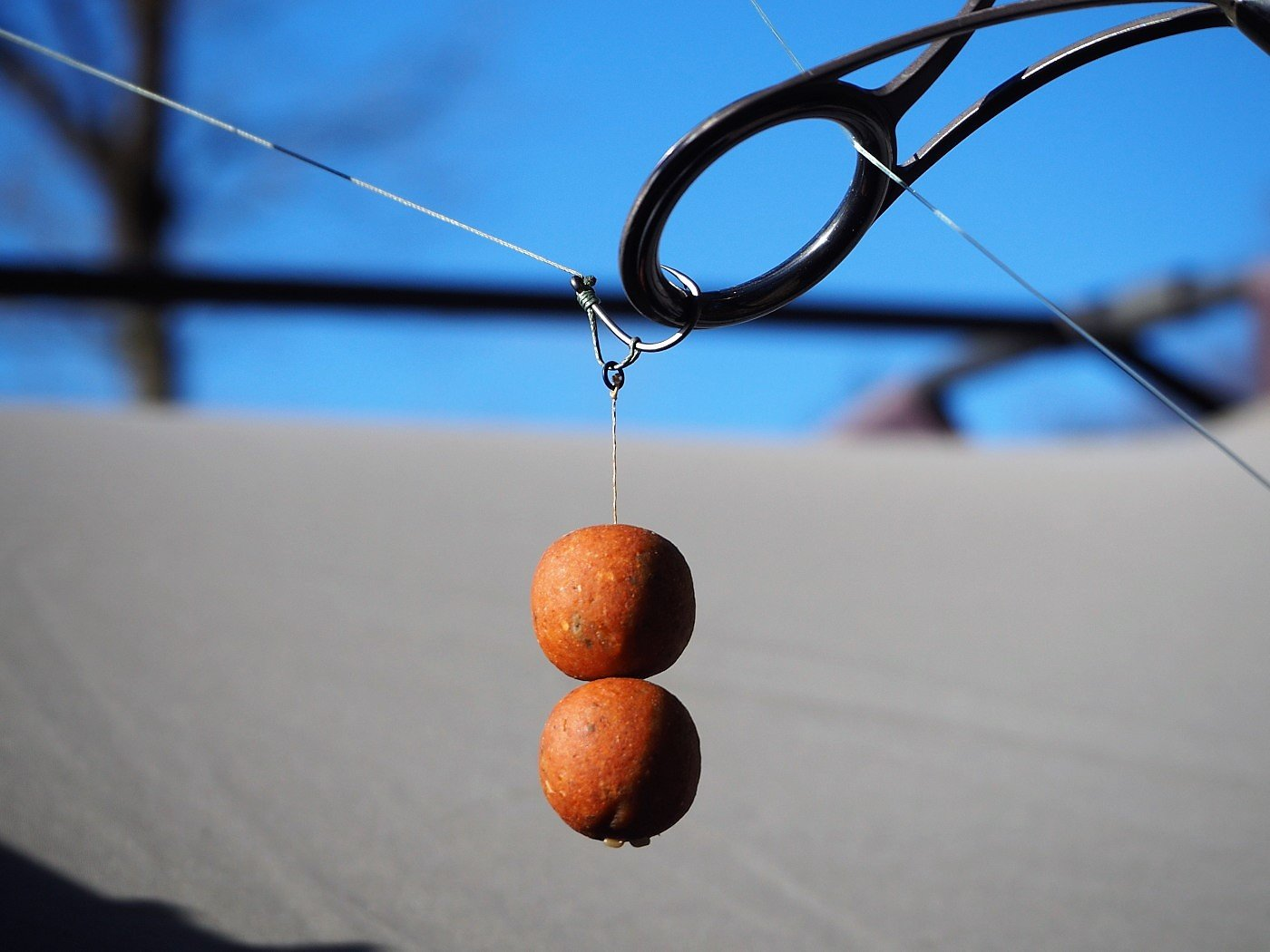blowback rig with double boilies