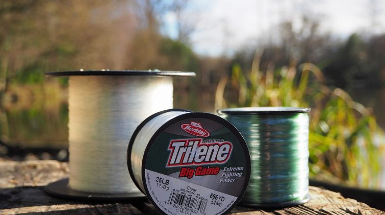best mono mainline for carp and catfish