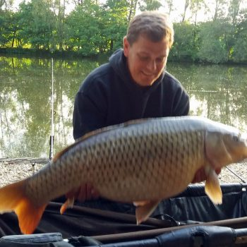 Mark with a 31lb common