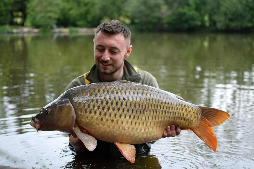 Max with the Box Common at 32lbs 12oz