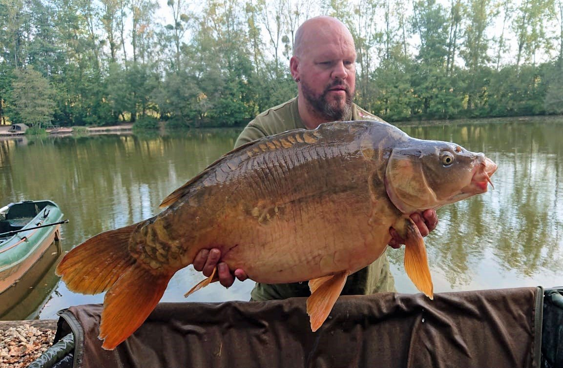 Vinnie with Bournville at 31lbs