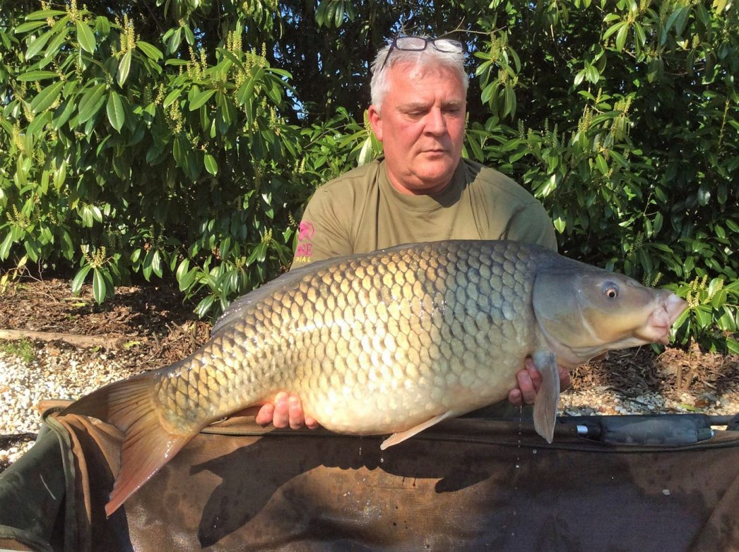 Carp angler in France Nik with a common carp of 31lbs 6oz