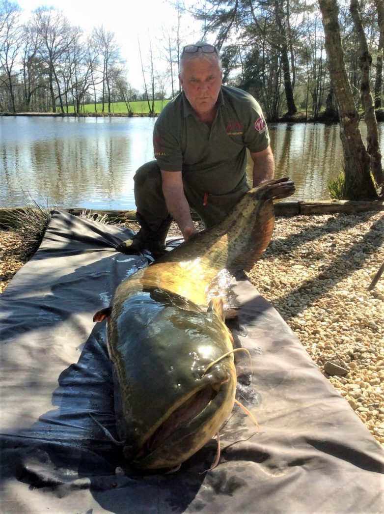 Nik with the lake record catfish of 113lbs in France