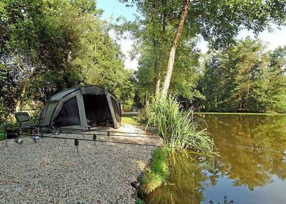 swim on private carp lake in france