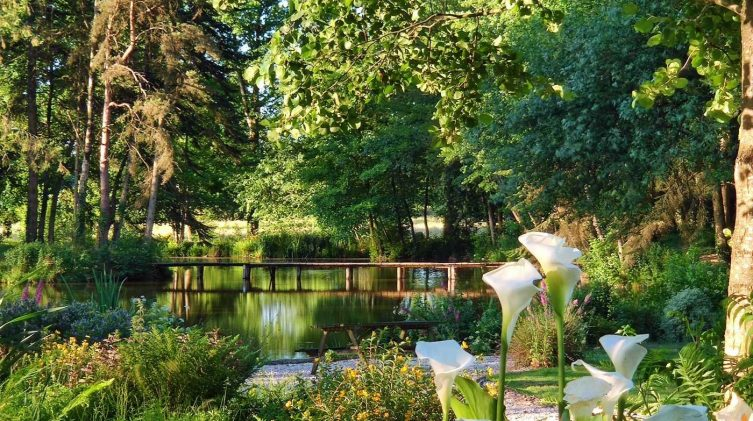 carp lake for fishing holiday for couples