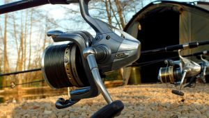 best carp fishing mainline